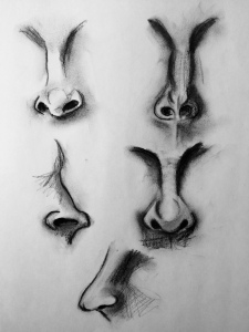 Noses. Charcoal 9